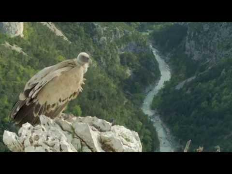 Chemins des Parcs - Tours et détours dans les Parcs naturels régionaux de Provence-Alpes-Côte d'Azur