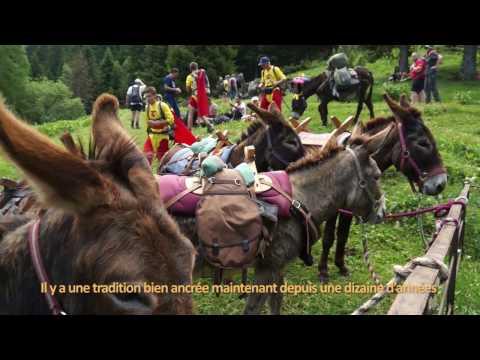 Tous en action ! Pyrénées catalanes : Fête de la Saint-Jean