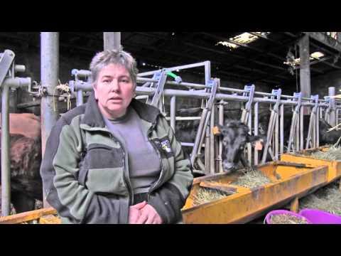 Portrait d'une agricultrice qui concilie environnement et économie