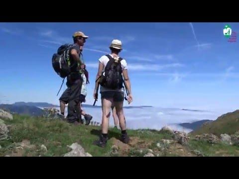 Randonnée en montagne : suivez les accompagnateurs Valeurs Parc naturel régional !