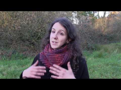 Chantier Natura 2000 sur le Menez Hom